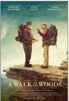 a walk in the woods movie poster image