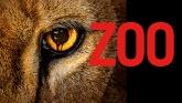 cbs zoo logo image