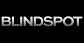 blind logo image